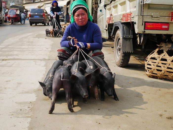 Où se trouve le marché à Xinjie ?