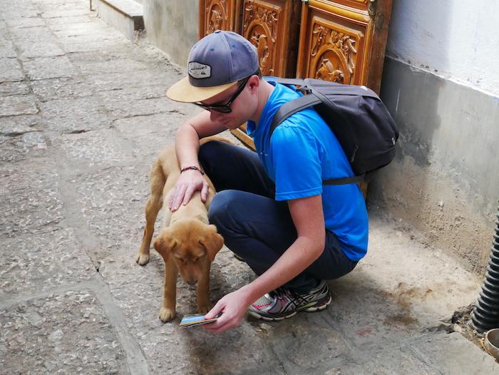 L'amour des animaux !