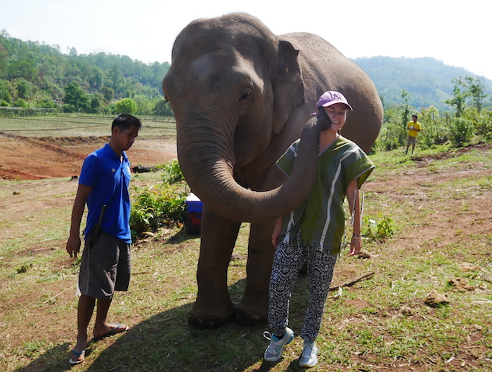 Que mange un éléphant ?