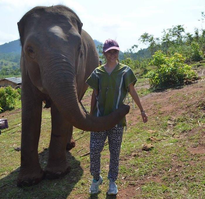 Pourquoi aller au Dumbo Elephant Spa ?