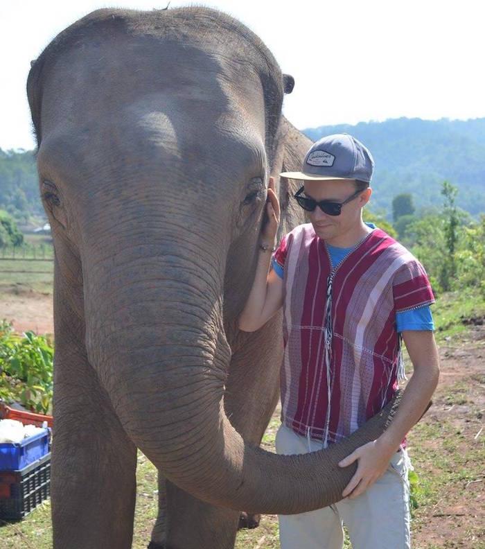 Comment faire un câlin à un éléphant ?