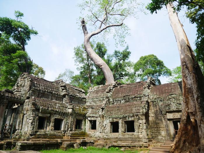 Combien coûte le pass 1 journée pour Angkor Vat ?