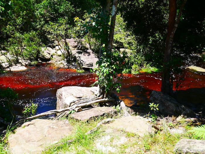 D'où vient la couleur de l'eau des cascades de Bokor ?
