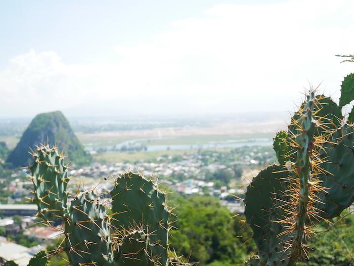 Comment trouver le point de vue de la Marble Mountain ?