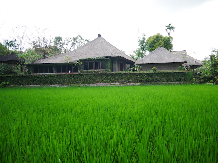 Où loger à Ubud ?
