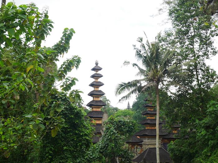 Où marcher à Ubud ?