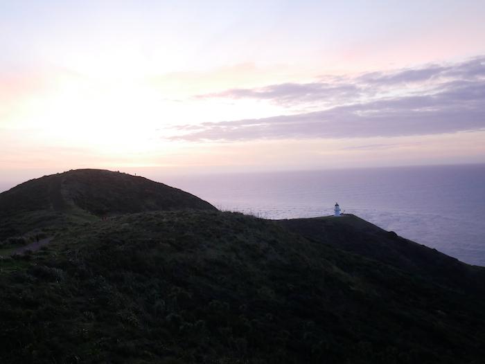Où se trouve le Cape Reinga ?