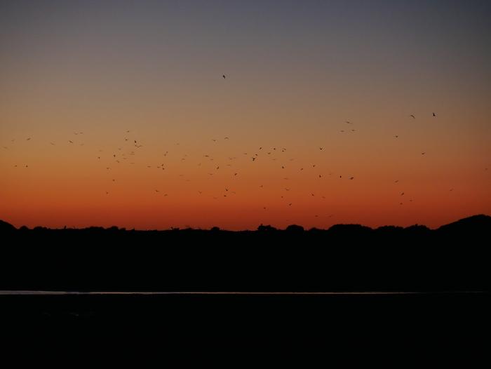 Où observer un beau coucher de soleil en Nouvelle-Zélande ?