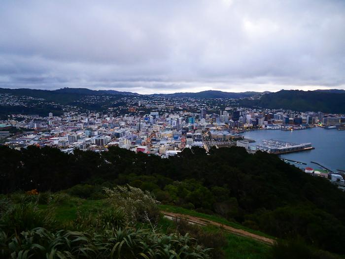 On voit toute la ville de Wellington !