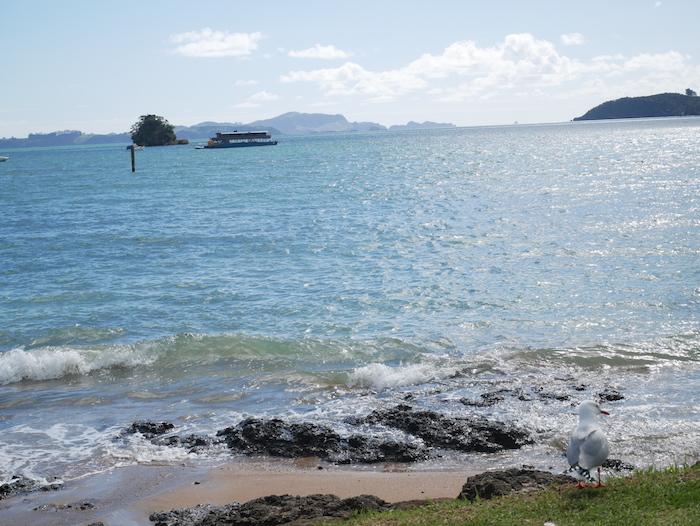 Que faire en road trip en Nouvelle-Zélande ?