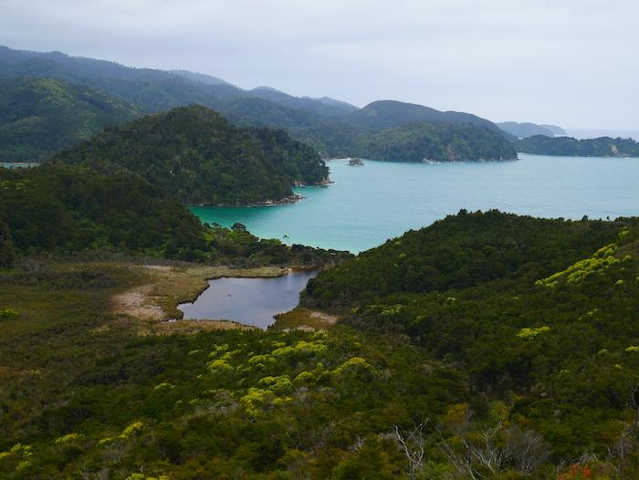 Que faire dans le parc d'Abel Tasman ?