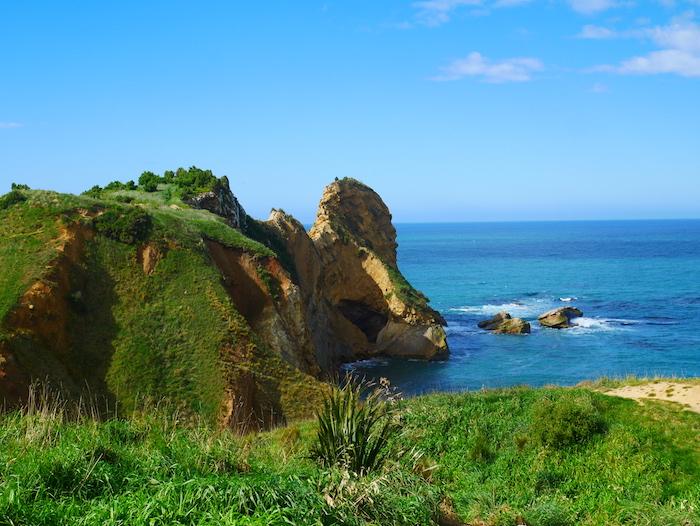 Que faire dans la baie d'Otago ?