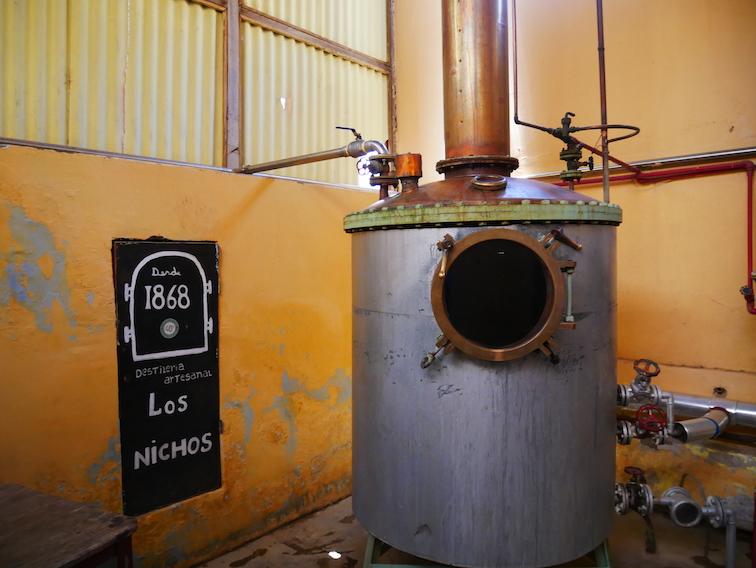 Quelle distillerie de pisco visiter ?