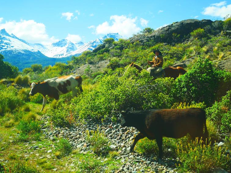 Que faire en Patagonie au Chili ?