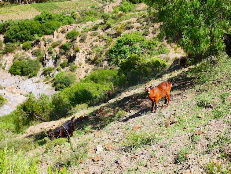 Sur la route des sept cascades près de Sucre.