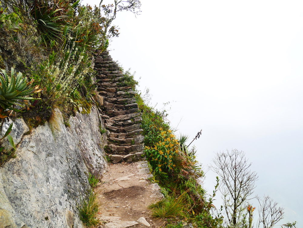 Pourquoi se rendre à la Montana Machu Picchu ?