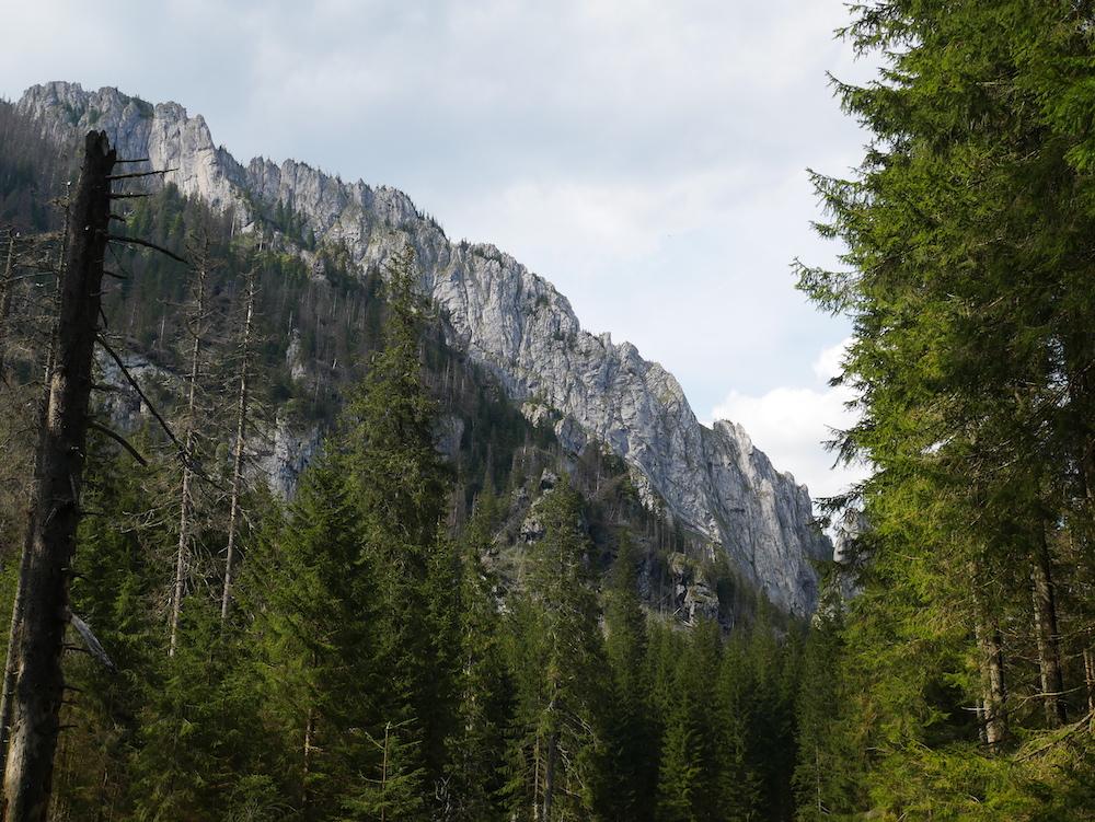 Montagne à Zakopane.