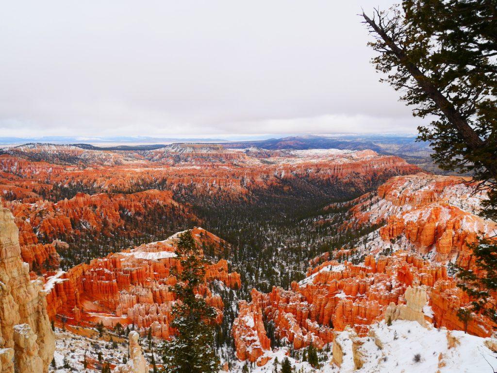 Quand visiter les parcs nationaux aux Etats-Unis ?