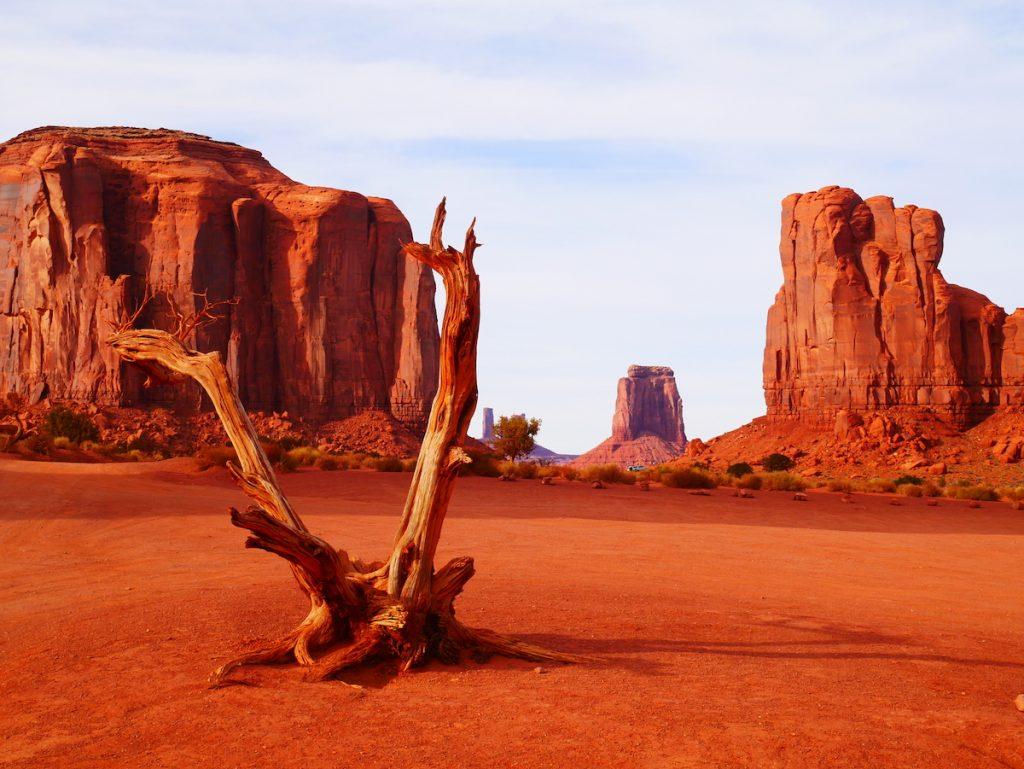Quels parcs visiter en Arizona ?