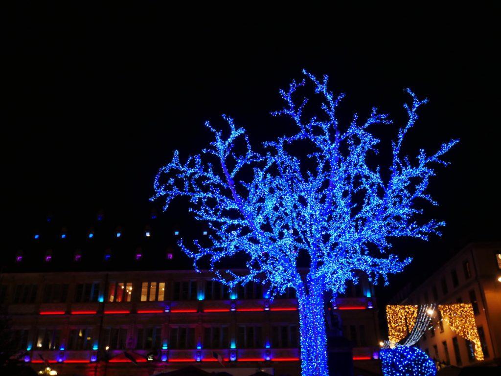 L'arbre bleu, place Gutenberg.