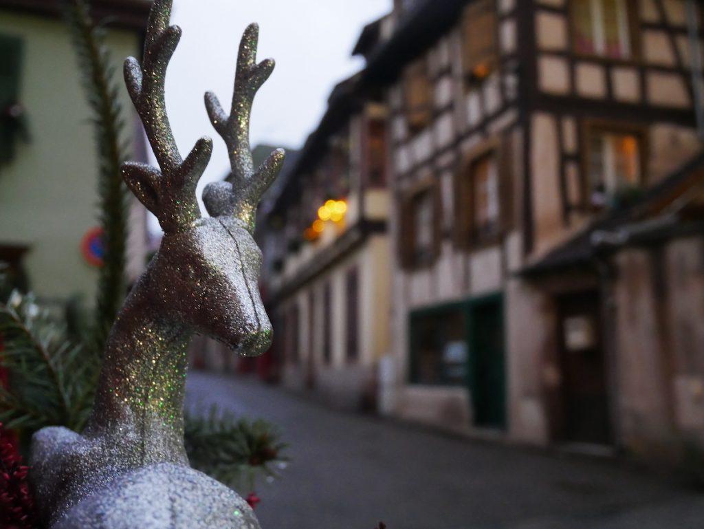 Que faire à Ribeauville ?
