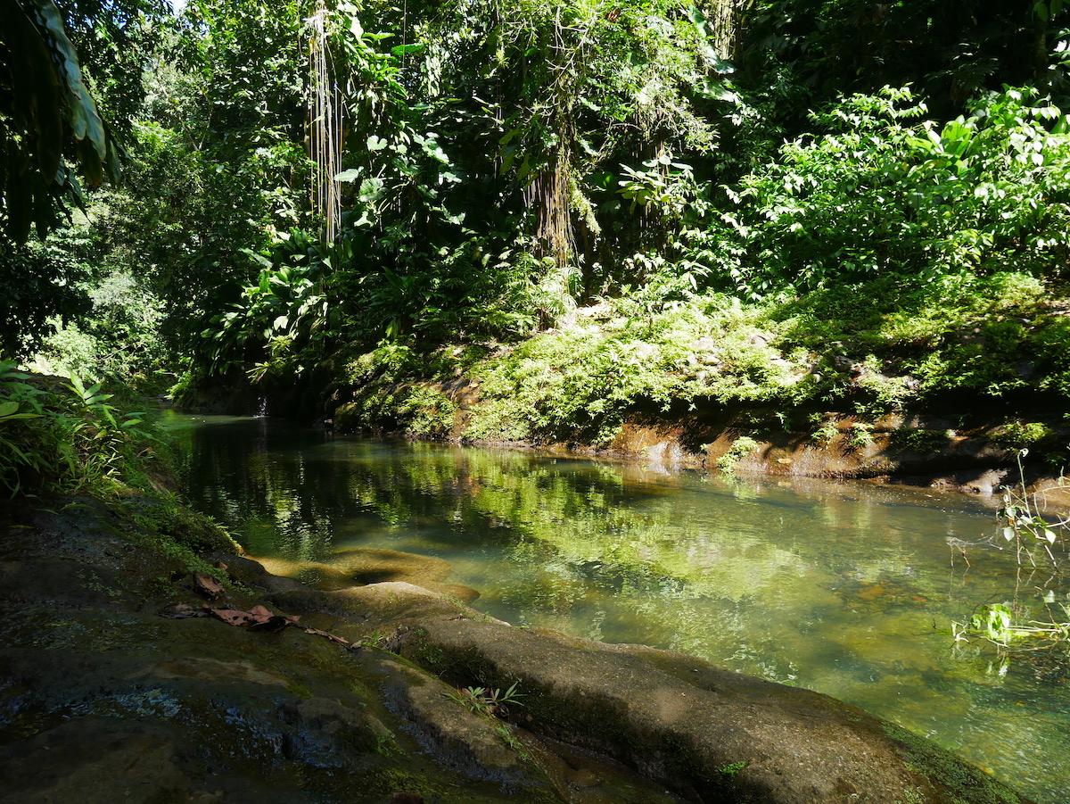 Quelles cascades visiter en Guadeloupe ?