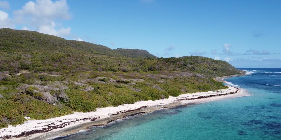 Plage de Marie-Galante en Guadeloupe