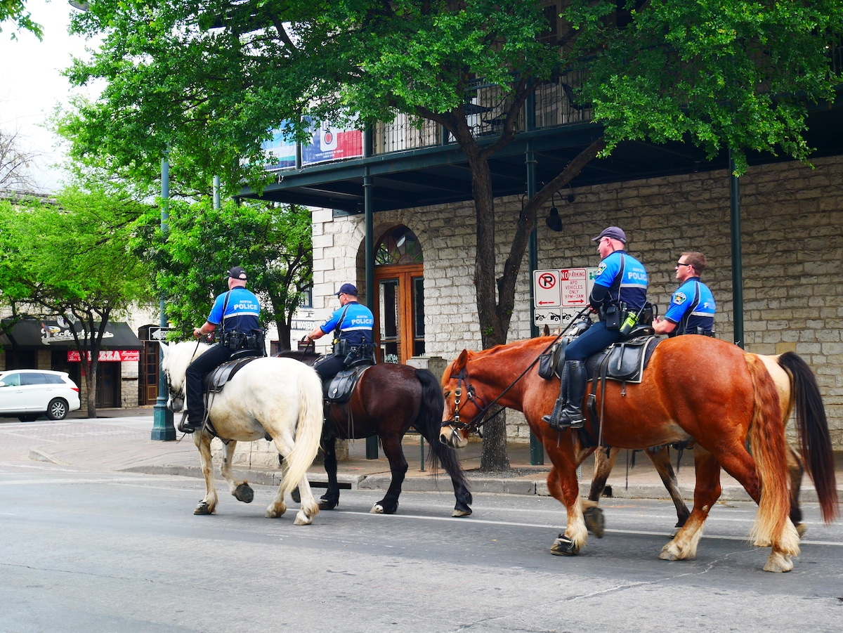 Police montée de Austin.